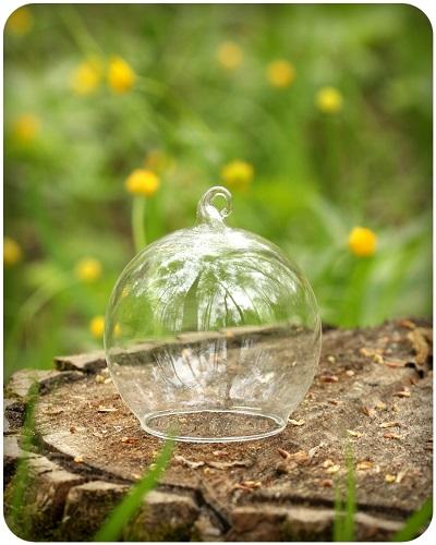 Декоративный стеклянный колпак