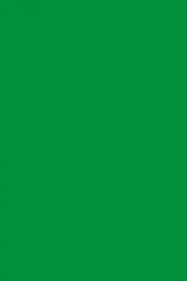 Фоамиран темно-зеленый 2 мм А4