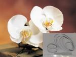 Набор каттеров Орхидея, средний st-57